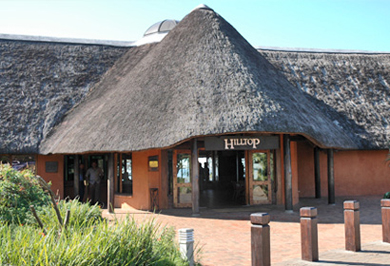 Guided Safaris Hilltop Camp Big 5 Hluhluwe iMfolozi uMfolozi Park KwaZulu-Natal South Africa