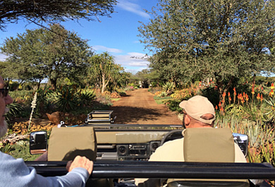 Zimanga Private Game Reserve Guided Photographic Safaris Hide Sessions KwaZulu-Natal South Africa