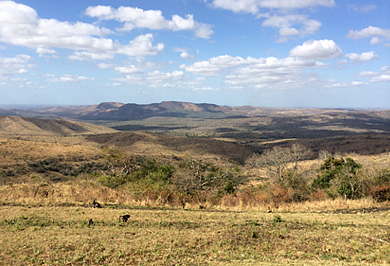 Guided Safaris Tours Hluhluwe iMfolozi uMfolozi View Park Hilltop Camp Big 5 South Africa