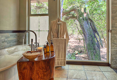 Phinda Forest Lodge Phinda Private Game Reserve Big 5 South African Guided Safaris Tours KwaZulu-Natal