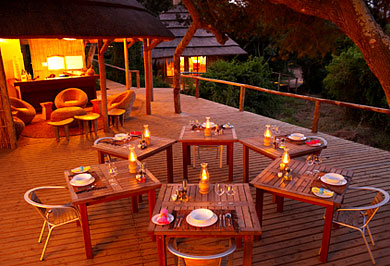 Guided Safaris Tours Thonga Beach Lodge KwaZulu-Natal South African