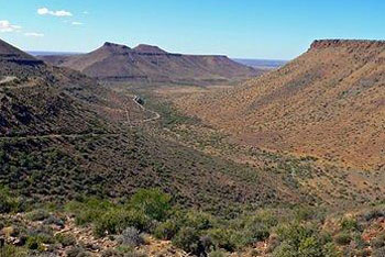 Karoo National Park Great Karoo Guided Safaris Nuweveld Mountains Western Cape South Africa