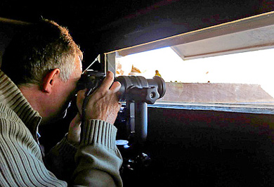 Zimanga Private Game Reserve Hide Sessions Photographic Safaris Private Safaris Tours Guide