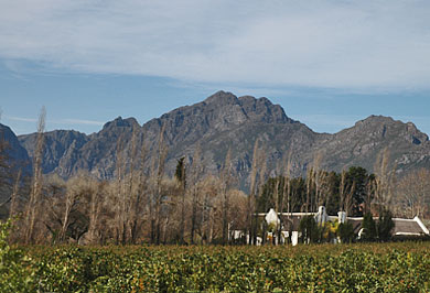 Cape Town Winelands Mountains Garden Route Guided Tours Western Cape South Africa