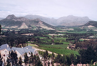 Cape Town Wine Farms Garden Route Guided Tours Western Cape South Africa