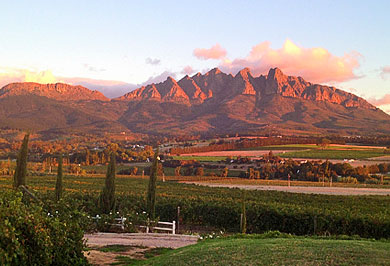 Cape Town Garden Route Guided Tours Winelands South Africa