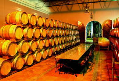 Cape Town Wine Barrels Garden Route Guided Tours Western Cape South Africa